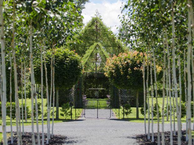 2-church_front_thru_trees_resize-960x600