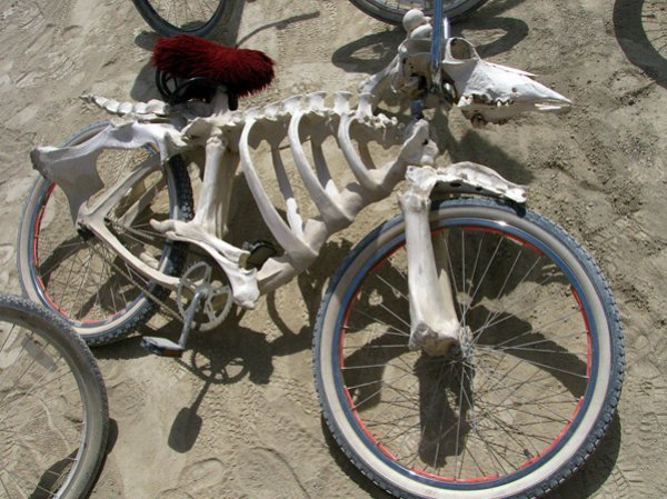 biciclete ciudate 1. Bicicleta schelet de animal