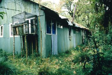 Cabana Dian Fossey