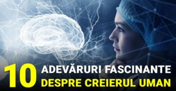 10 adevaruri fascinante despre creierul uman_compressed