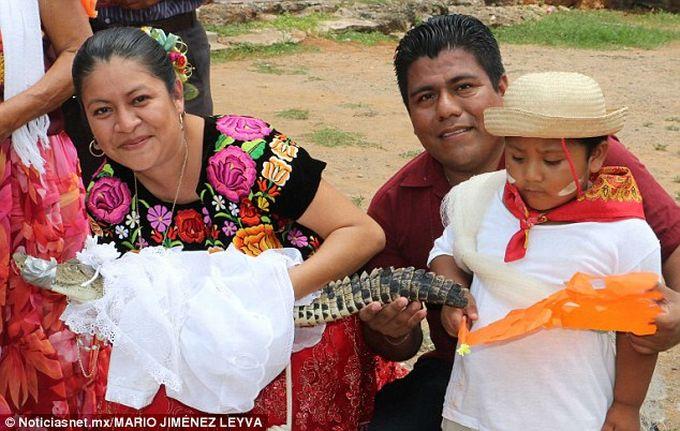 Casatorie cu un crocodil - Mireasa 2
