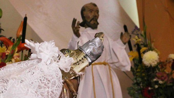 Casatorie cu un crocodil - Mireasa