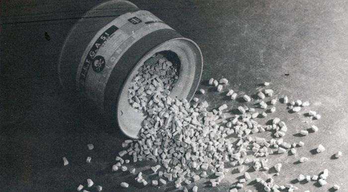 Regimul nazist - Bayer