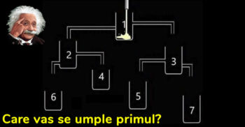 care vas se umple primul - featured