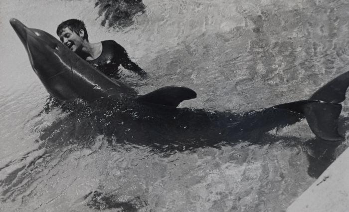 margaret lovatt si delfinul peter