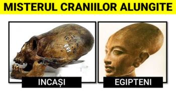 Craniile alungite: Moștenirea genetică a unei rase necunoscute