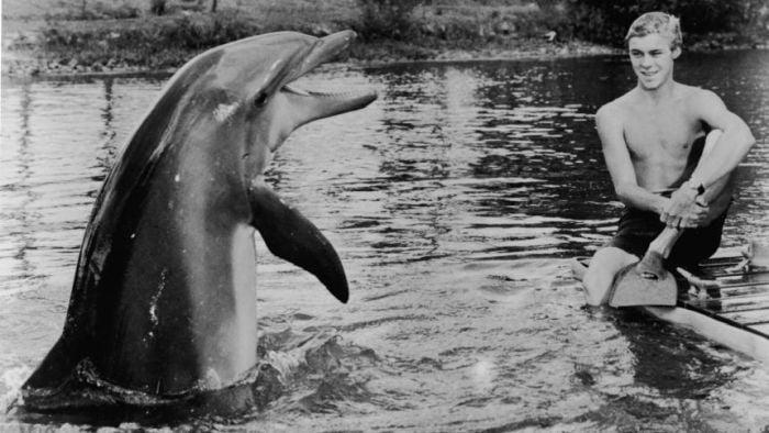 secventa din filmul flipper