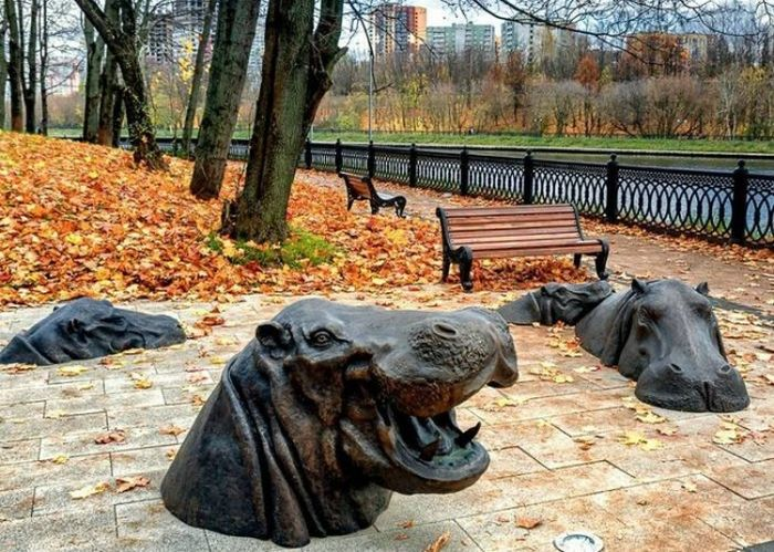 05 design urban hipopotami