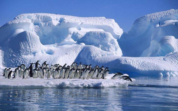 Cele mai frumoase locuri din lume - Antarctica