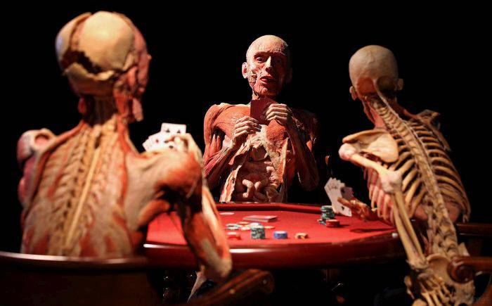 Expozitia corpul uman - cartofori