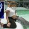 Aparențe înșelătoare – 5 animale obișnuite, cu abilități extraordinare featured_compressed