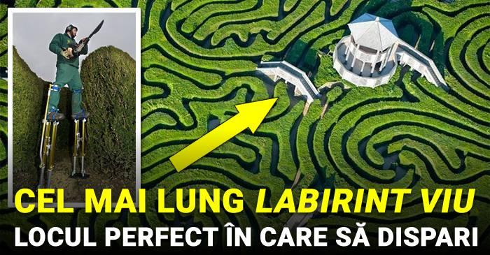 Cel mai lung labirint viu din lume – Locul ideal în care să dispari câteva ore_compressed