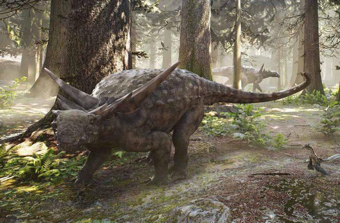 Dinozaur 3 D