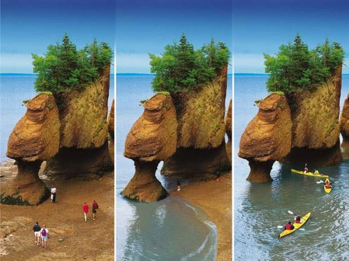Golfuri - Golful Fundy