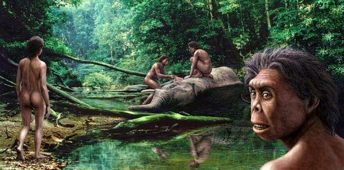 Kalanoro - primitivi