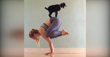 7 exerciții fizice ciudate, care alungă definitiv plictiseala din sport