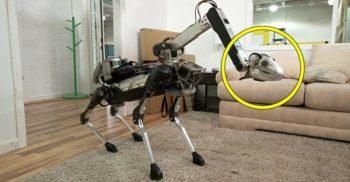 <mark>VIDEO</mark> Ziua în care oamenii i-au învățat pe roboți să riposteze