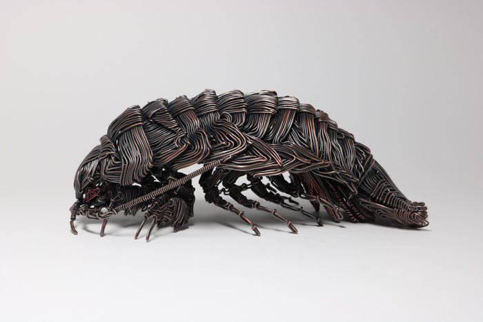 Sculptor japonez - insecte