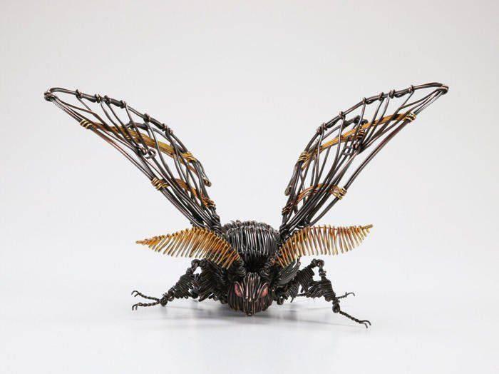Sculptor japonez - musca