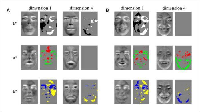 Această tehnologie îți citește gândurile și poate reproduce ceea ce vezi