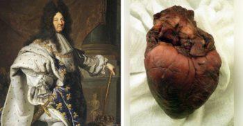 Apetitul uriaș al lui Ludovic al XIV-lea și savantul care i-a mâncat inima