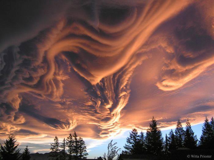 Fenomene unice - Nori Asperitas
