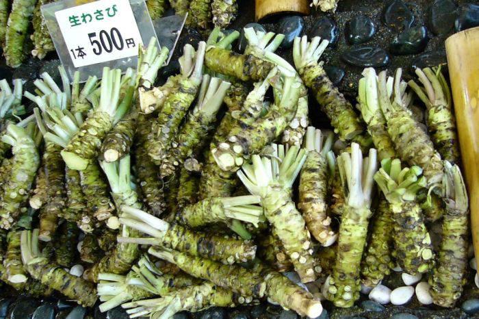 Plante comestibile - Wasabi