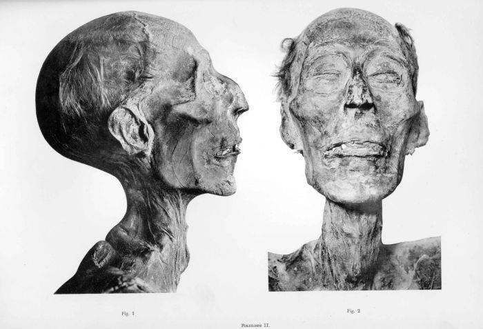 Ramses al II-lea - Mumia