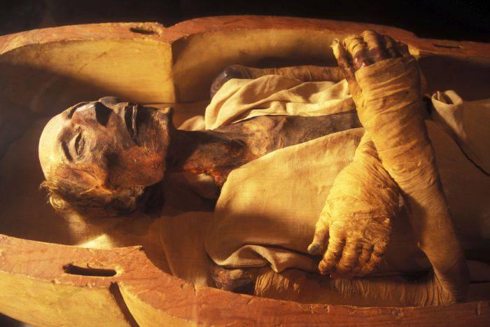 Ramses al II-lea - exponat