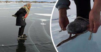 Stăpâna fericirii – Bunica patinatoare de pe Lacul Baikal featured_compressed