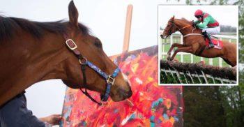 <mark>VIDEO</mark> Povestea fericită a lui Metro, calul care și-a salvat viața pictând