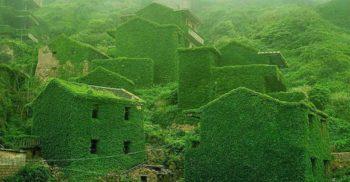 Iată puterea naturii – Abandonat de oameni, acest sat pescăresc a fost reînviat de vegetație