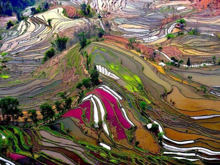 Locuri colorate - Yuanyang