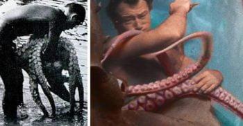 Luptele cu caracatițe – Istoria bizară a unui sport incredibil