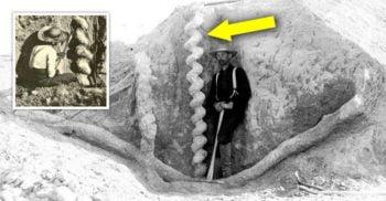 Tirbușoanele diavolului – Misterul natural care le-a jucat feste savanților în urmă cu un secol