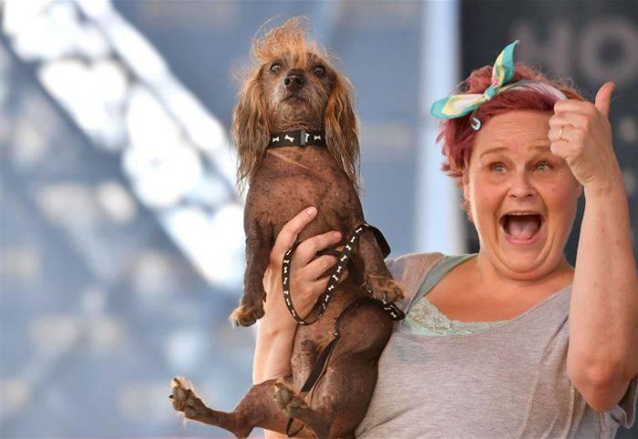 Cel mai urât câine din lume