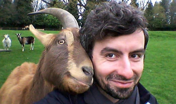 curiozitati_despre_capre_02