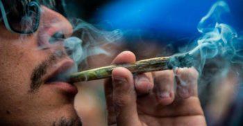 Legalizarea drogurilor Efectele benefice nebănuite ale unui experiment mexican featured.fw_compressed