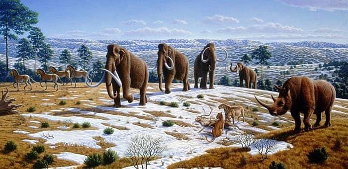 specii dispărute care ar putea fi readuse la viață
