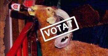 5 animale care au candidat la alegeri pentru funcții publice