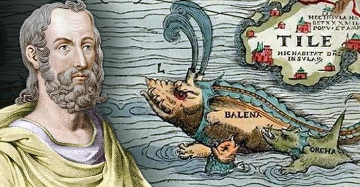 Pliniu cel Bătrân nu era nebun Au existat balene în Mediterana featured_compressed
