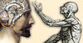 10 lucruri interesante despre corpul uman descoperite recent