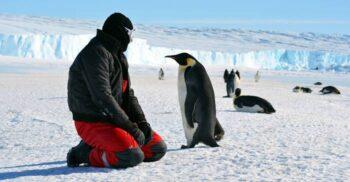 13 curiozități despre Antarctica, deșertul misterios de la Polul Sud