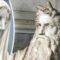 9 statui faimoase și tainele lor bine păzite featured_compressed