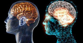 Cât la sută folosim din creier? Este adevărat că doar 10%?