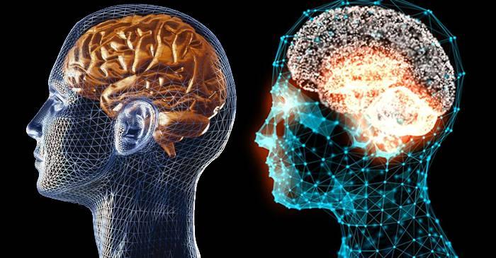 Cât la sută folosim din creier Este adevărat că doar 10% featured_compressed