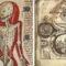 Misteriosul Codex Rohonczi, manuscrisul care de 200 de ani naște întrebări featured_compressed