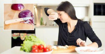 Totul despre ceapă: O istorie a lacrimilor vărsate în bucătărie
