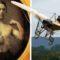 10 invenții și descoperiri care au schimbat lumea featured_compressed