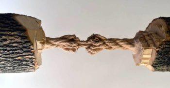 Cioplită în trunchiul unui frasin, această sculptură pare să sfideze gravitația